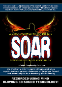 SOAR Conquer Procrastination Remove Blocks Raise Vibrations